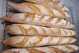 Took a lesson in breadbaking