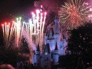 Visited Disney World