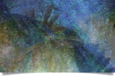 canvas-2x